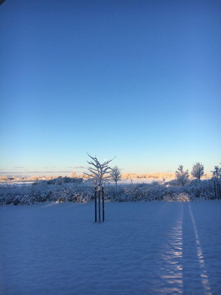 Wintergarten im Sonnenaufgang