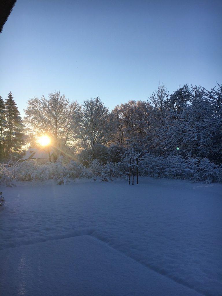 Sonnenaufgang im schneebedeckten Garten
