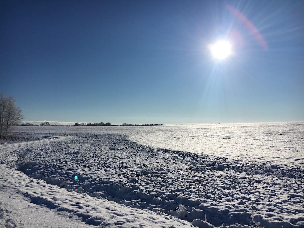 Schneefeld im Sonnenlicht