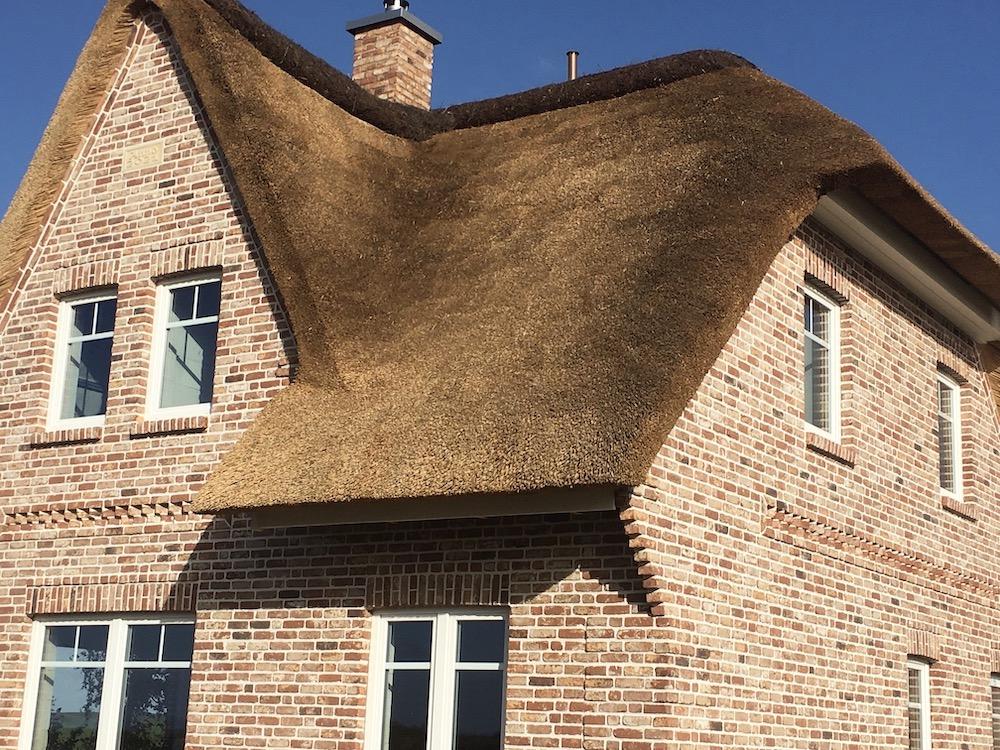 Man sieht einen Teil des Reetdaches vom Ferienhaus
